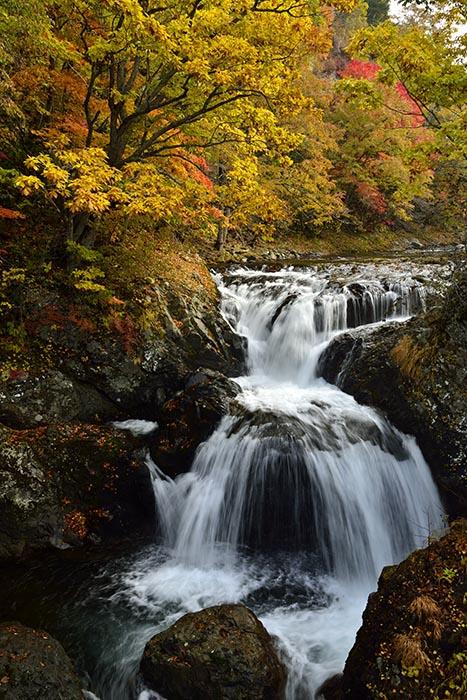 秋景流麗3