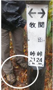 20161022信越28