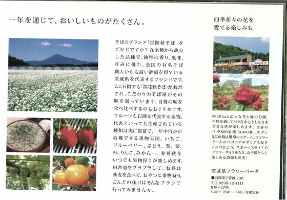 石岡HISTRIP_ページ_08