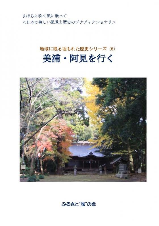 6_Miho_Ami_Top_20160430115904b49.jpg