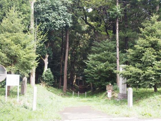 P4220067s.jpg