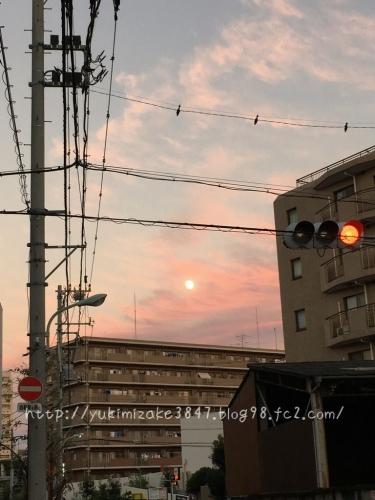 20161014001.jpg