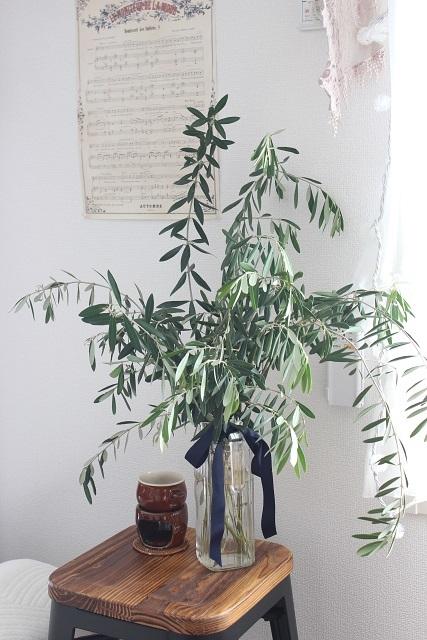 オリーブの枝 (4)
