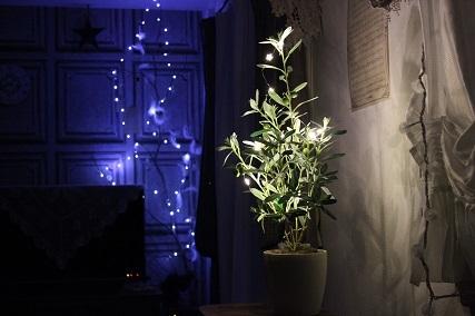LED ガーランド (10)