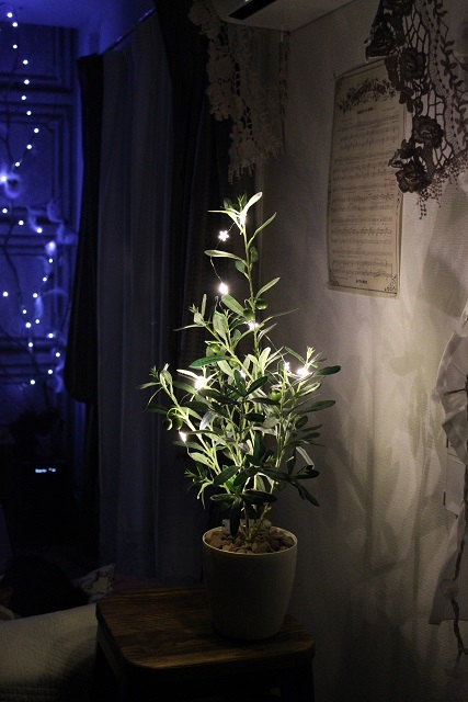 LED ガーランド (9)