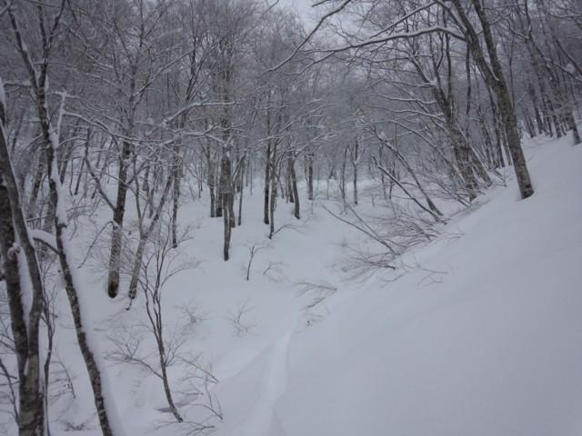 1月30日 ナイス地形