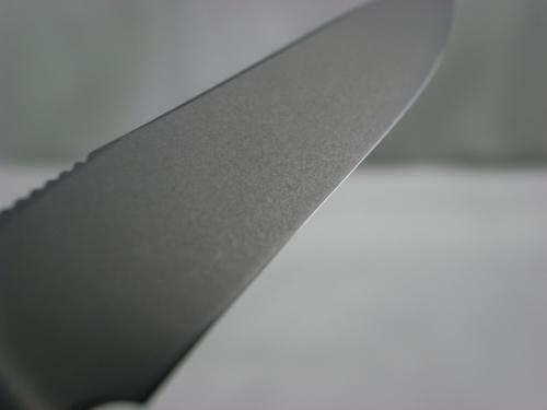 R0014965 (800x600)
