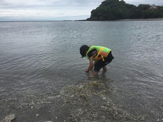4アオサ採りアラカブ釣り20160515