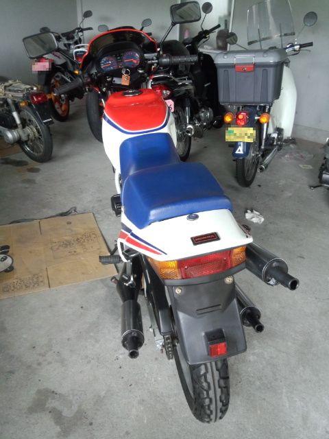 DCF00435.jpg