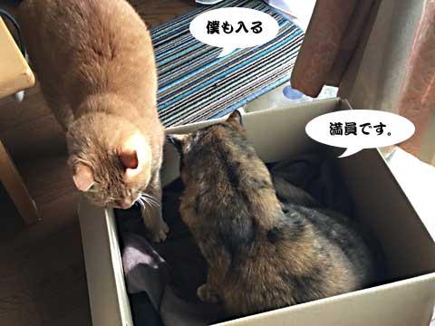 2016_10_30_1.jpg