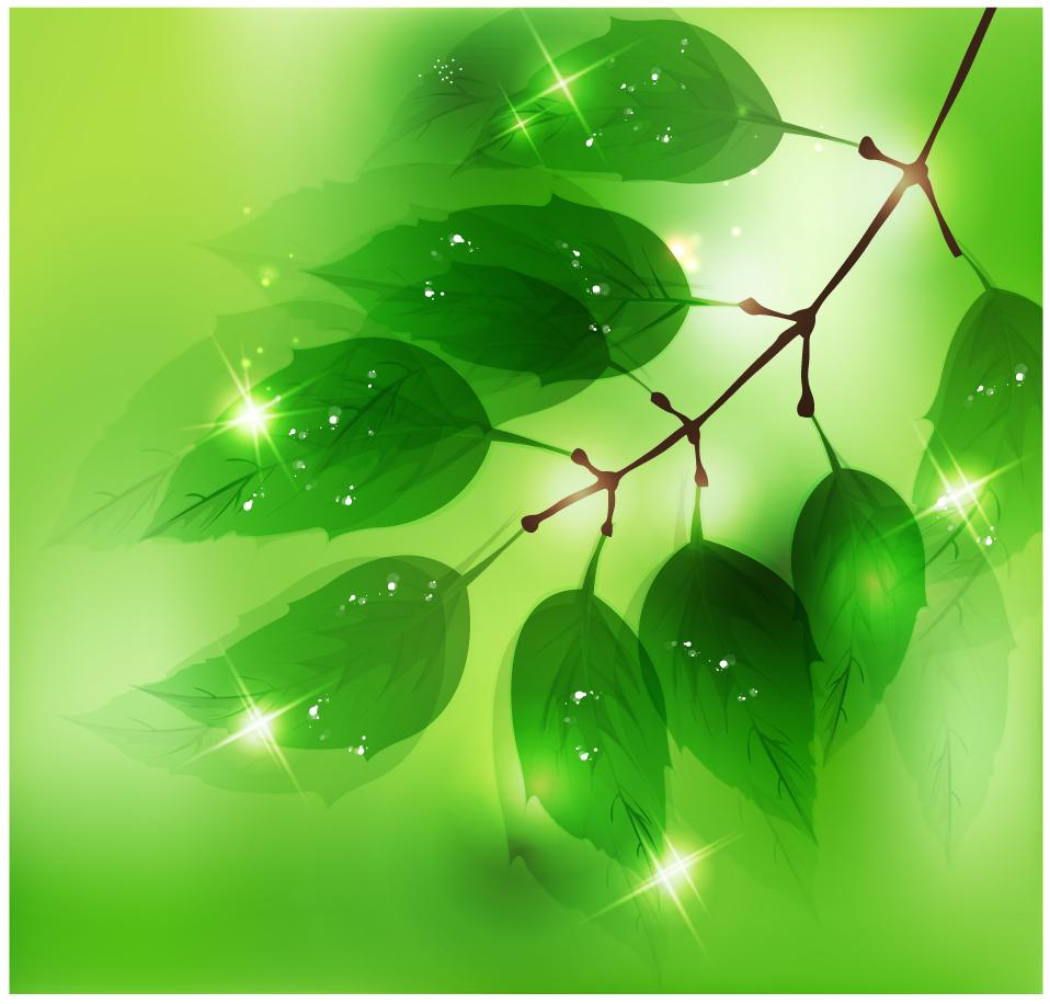 陽に輝く新緑の葉20Nature20Background20with20Fresh20Green20Leaves20イラスト素材[1]