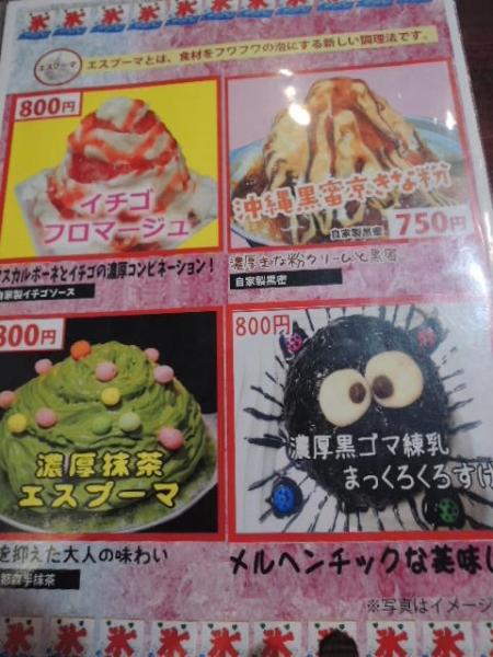 かき氷専門店 カキゴーラー (11)