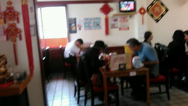 龍鳳園 三郷店 (14)
