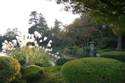 1104kenrokususuki.jpg