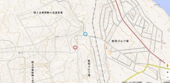tizu3335xds.jpg