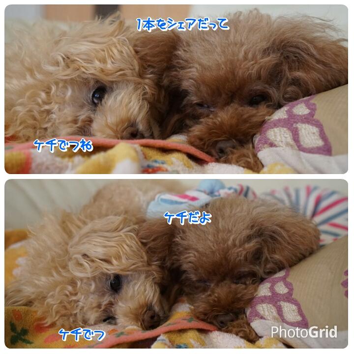 20160802130121bd1.jpg