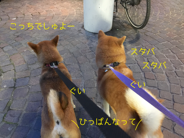 201610271928184cb.jpg