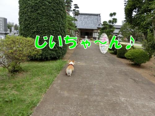 20160813114559fc3.jpg