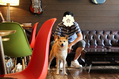 s-dogcafe161002-IMG_3732
