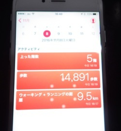 IMGP2828.jpg