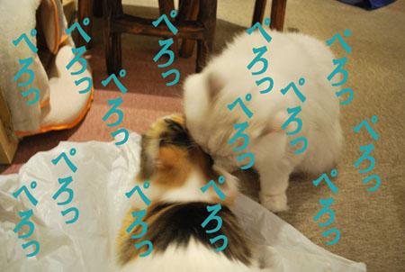 160603-(46).jpg