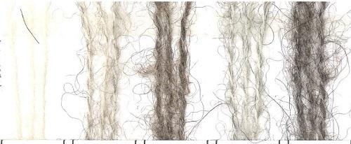 1575ソノモノヘアリー糸