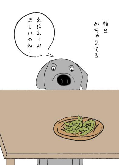枝豆とラブラドール