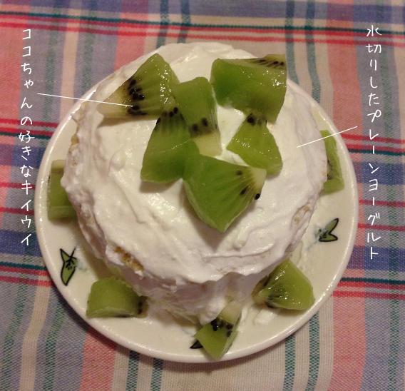 ワンコのバースデーケーキ