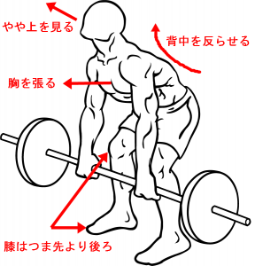 deadlift-diagram1