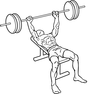 Bench-press-1.png