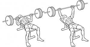 Bench-press-2-horz.jpg