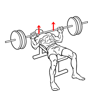 Bench-press-2.png