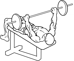 Decline-bench-press-1.png