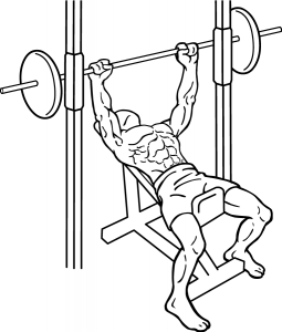 Incline-bench-press-2-1-255x300.png