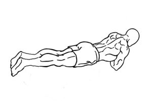 Push-ups-3-1-crop.png