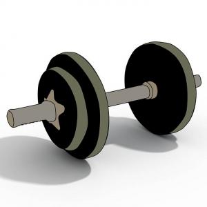 bodybuilding-1141063_960_720.jpg