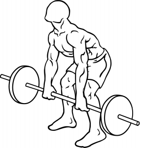 deadlift-diagram.png