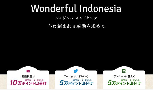 ワンダフルインドネシアキャンペーン