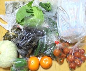 野菜どっさり