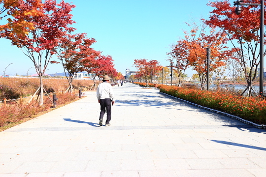 shokubutuen001.jpg