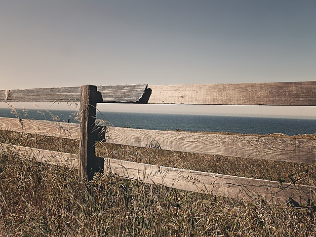 fence-238475_640.jpg