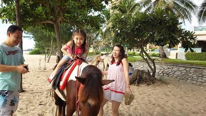 ビーチで馬と (10)