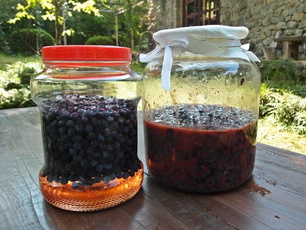 2種類の酢の始まり