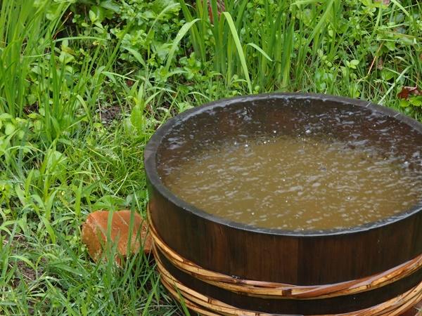 桶いっぱいの雨水