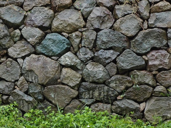 雨に現れる石