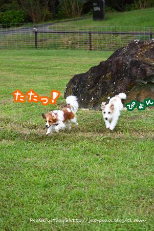 161014_kurosawa15.jpg