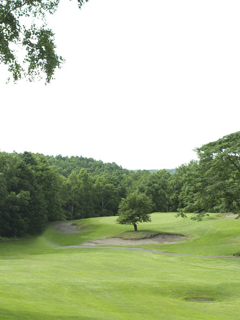 hole11.png