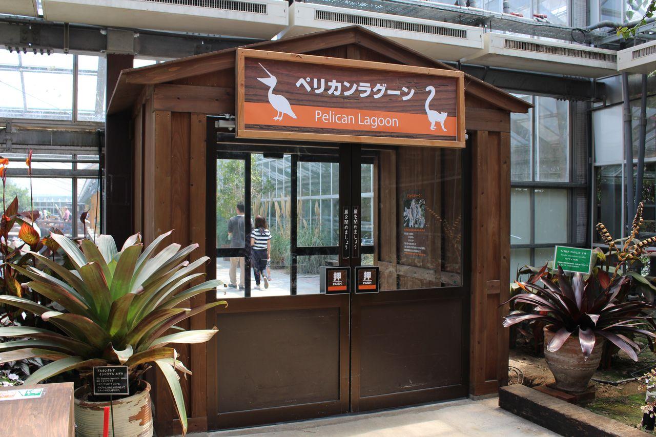 神戸どうぶつ王国-65