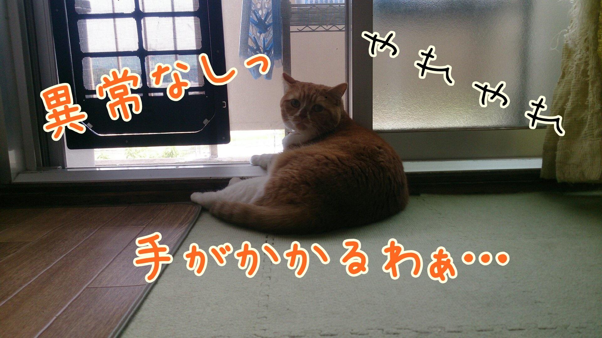 DSC_0403-01.jpg