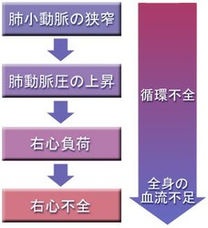 14-fig-chart.jpg